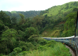 Glorious_journey_through_Western_Ghats-1