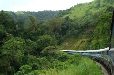 Glorious_journey_through_Western_Ghats-1