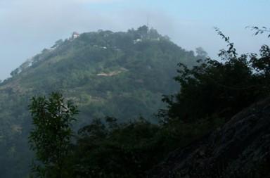 Wild-Elephant-at-BR Hills