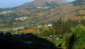 Wellington-hill-view2