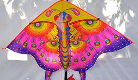 patang-kite-flying