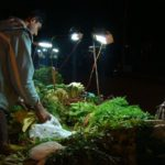 Eco-friendly Ideas - Selco Solar Lamp for Street Vendors