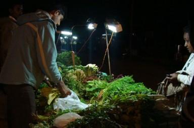 Selco Solar Lamp for Street Vendors