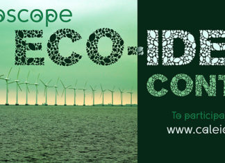 eco-ideas India
