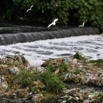 Reviving a dead river – Vrishabhavathi