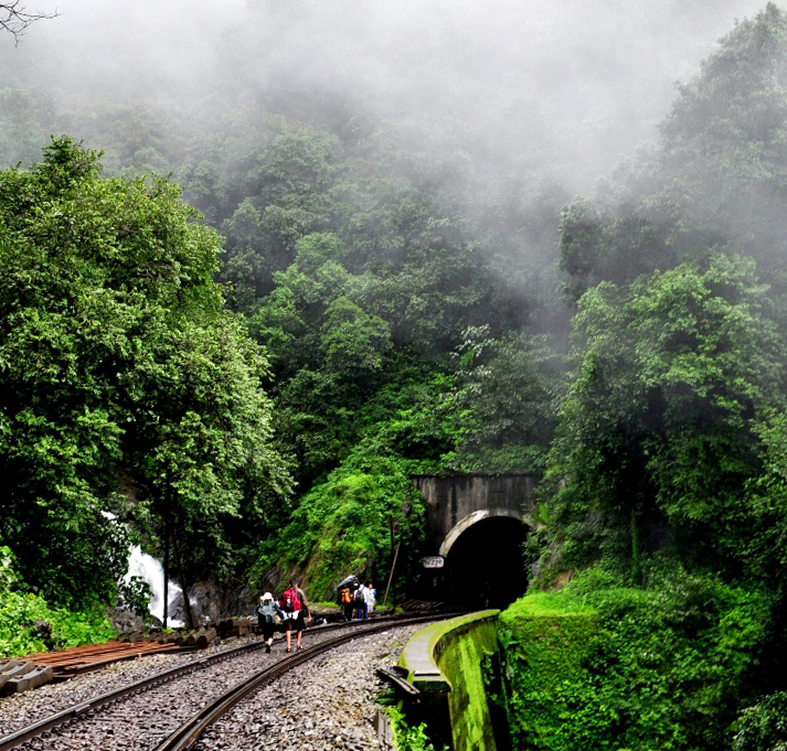 Ecotourism India