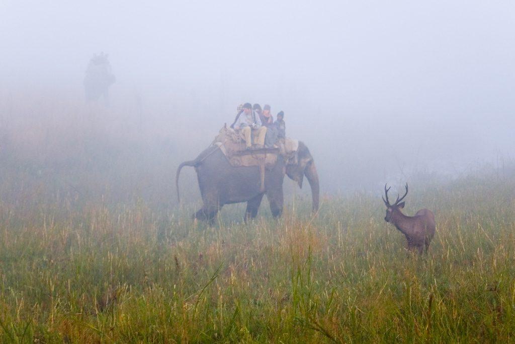 ecotourism-in-India-2