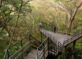 ecotourism-in-India