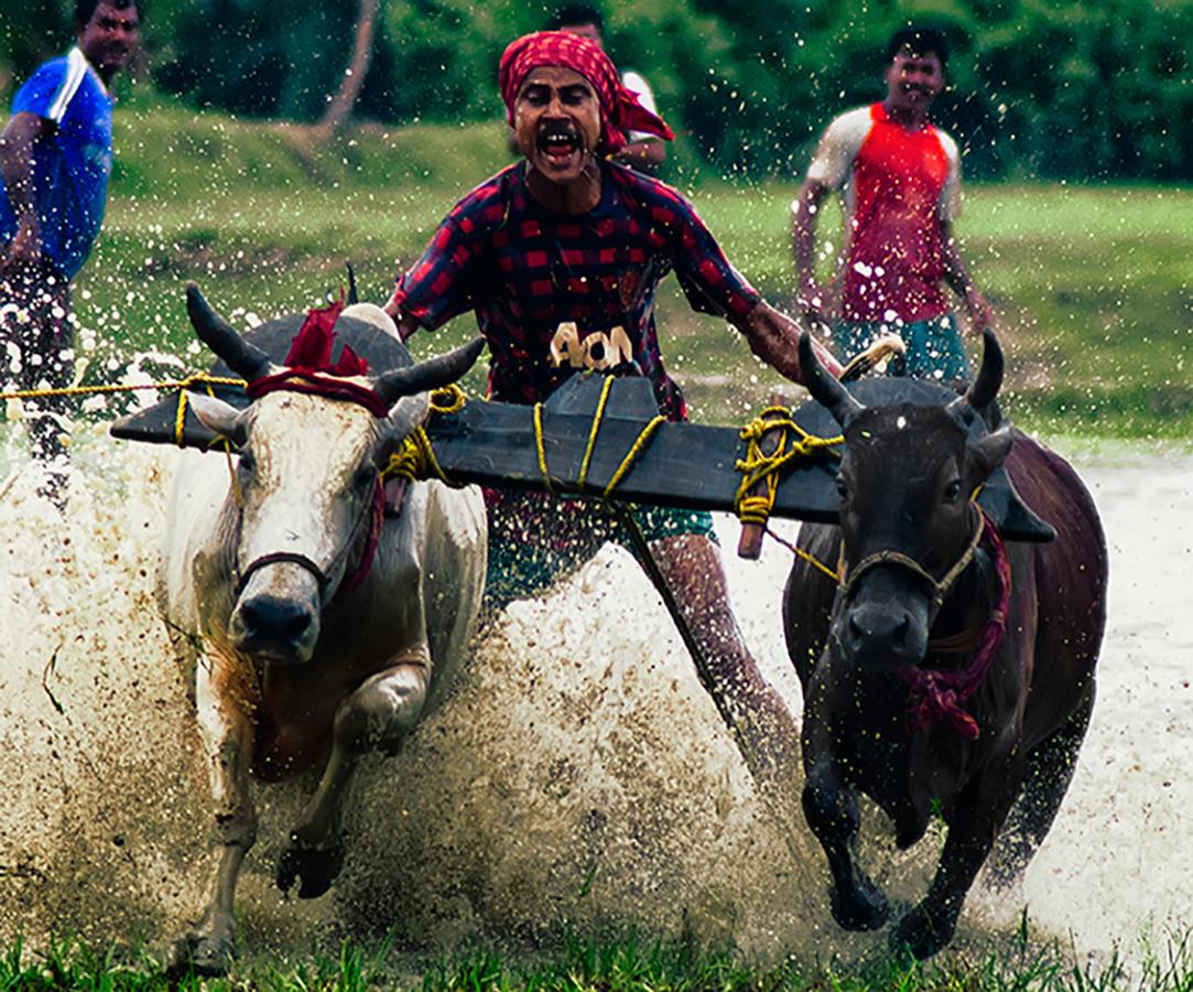 Moichara-West-Bengal