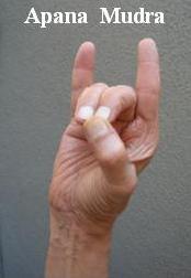 hand mudras - apana mudra