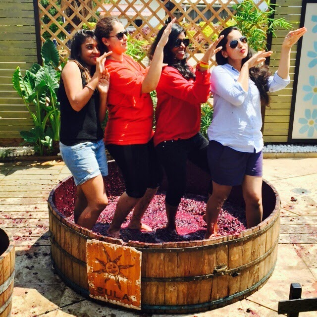 Sula vineyard—Of wine, cheese, and good music