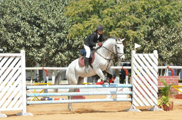 Agram Riding and Polo Academy