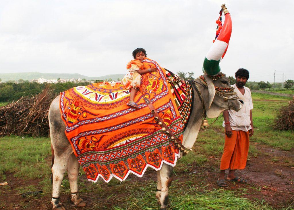 Bail-Pola-Maharashtra
