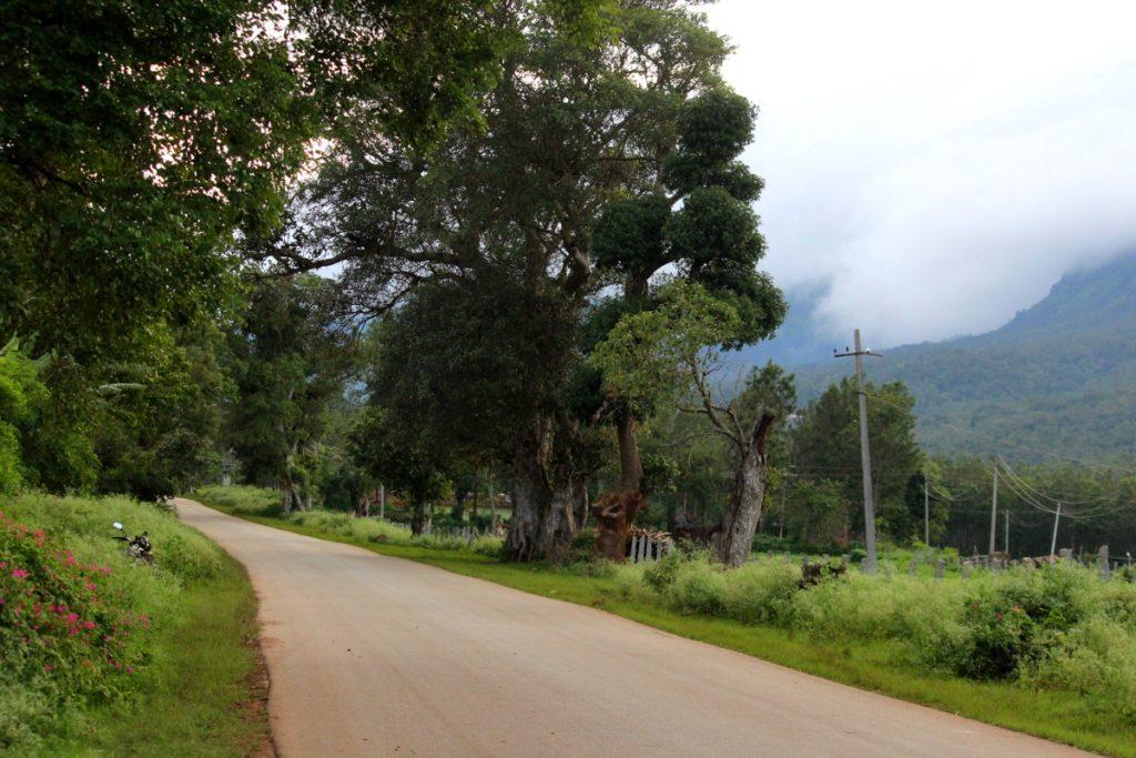 Chikmagalur-Road