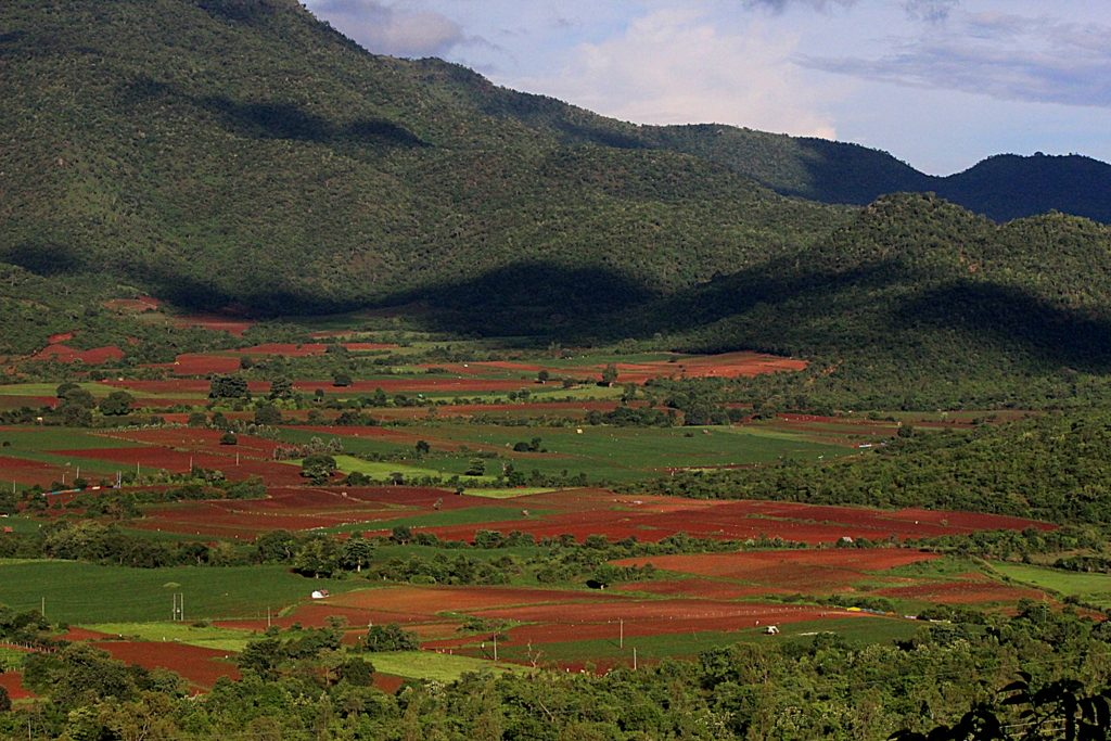 Chikmagalur Coffee-Country-Rolling-Hills