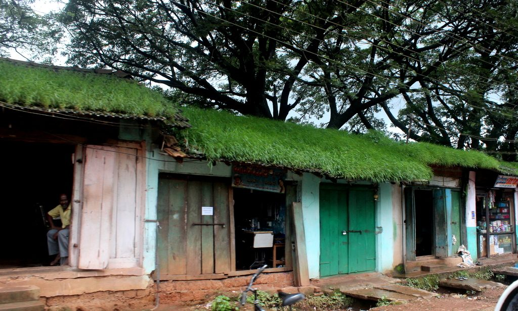 Chikmagalur Coffee-Country-row-shops