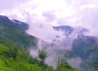 Blue-Mountains-of-Nilgiris