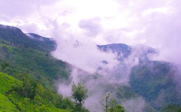 Blue-Mountains-of-Nilgiris