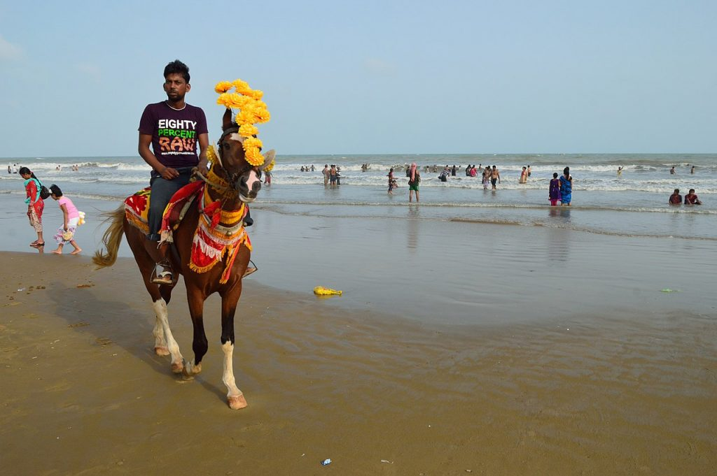 Horseback-Riding-Trails-in-India-Digha