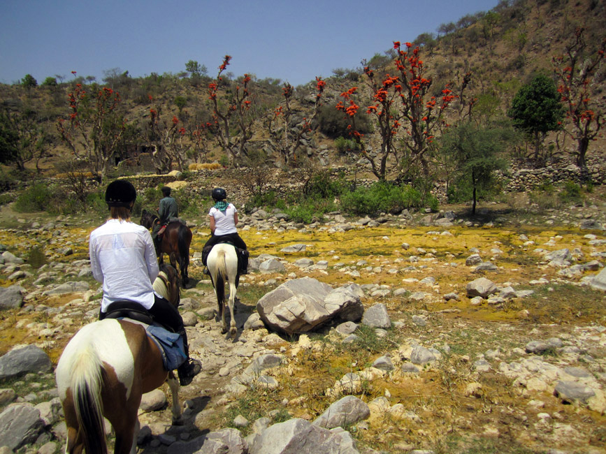 Horseback-Riding-Trails-in-India