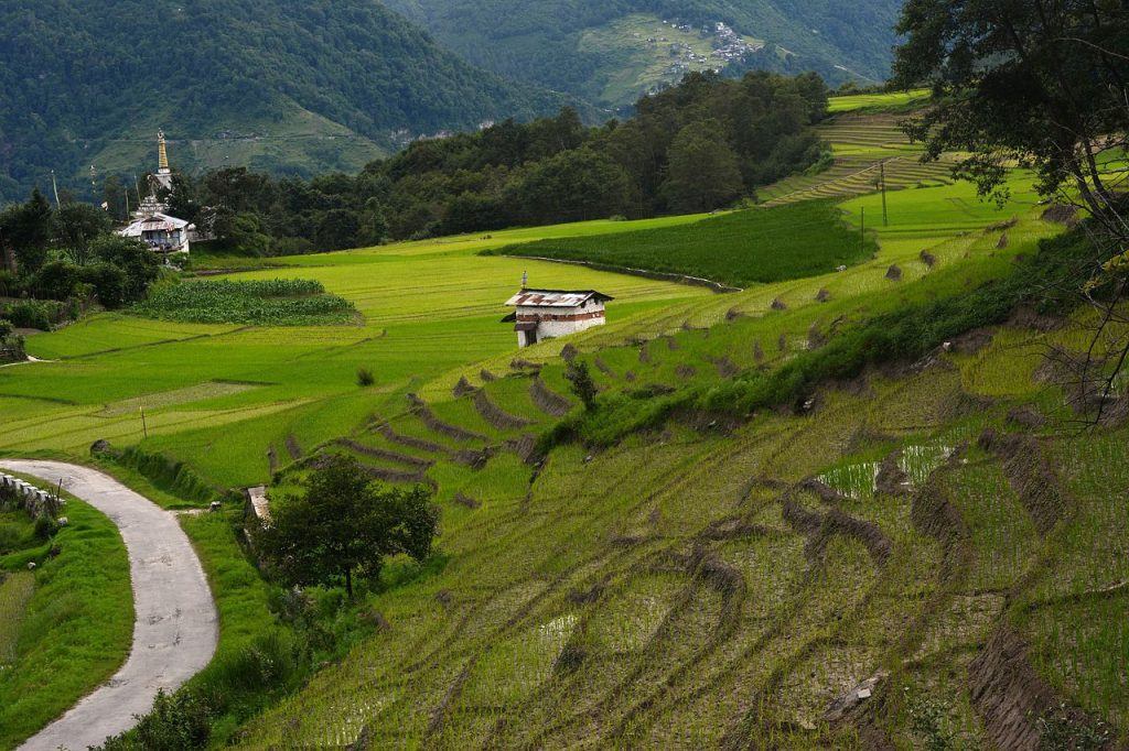 Beautiful-Offbeat-Places-in-India-Ziro,-Arunachal-Pradesh