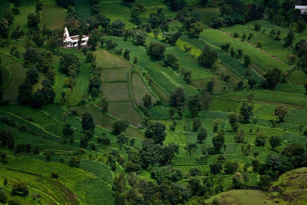 Destinations-to-Visit-in-Maharashtra-Mahabaleshwar