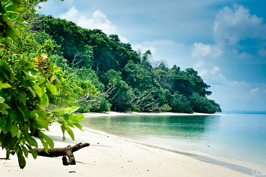 Things-to-Do-in-Andaman-&-Nicobar-Islands-08