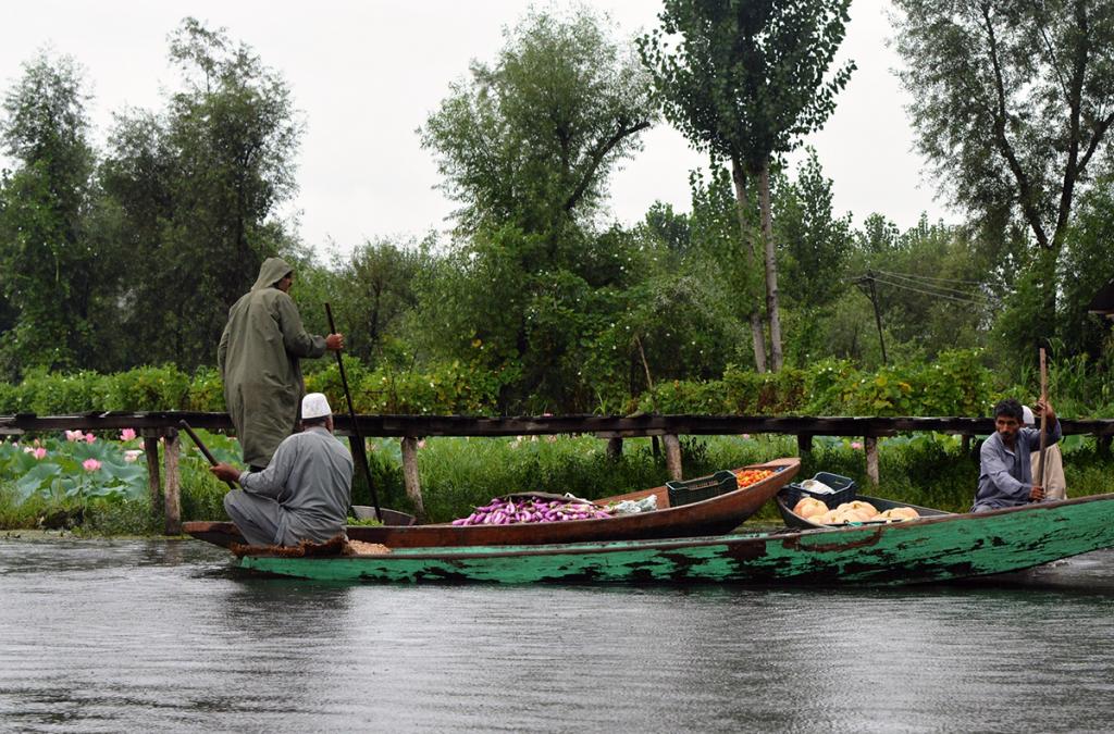 Dal-lake,-Srinagar,-Kashmir-02