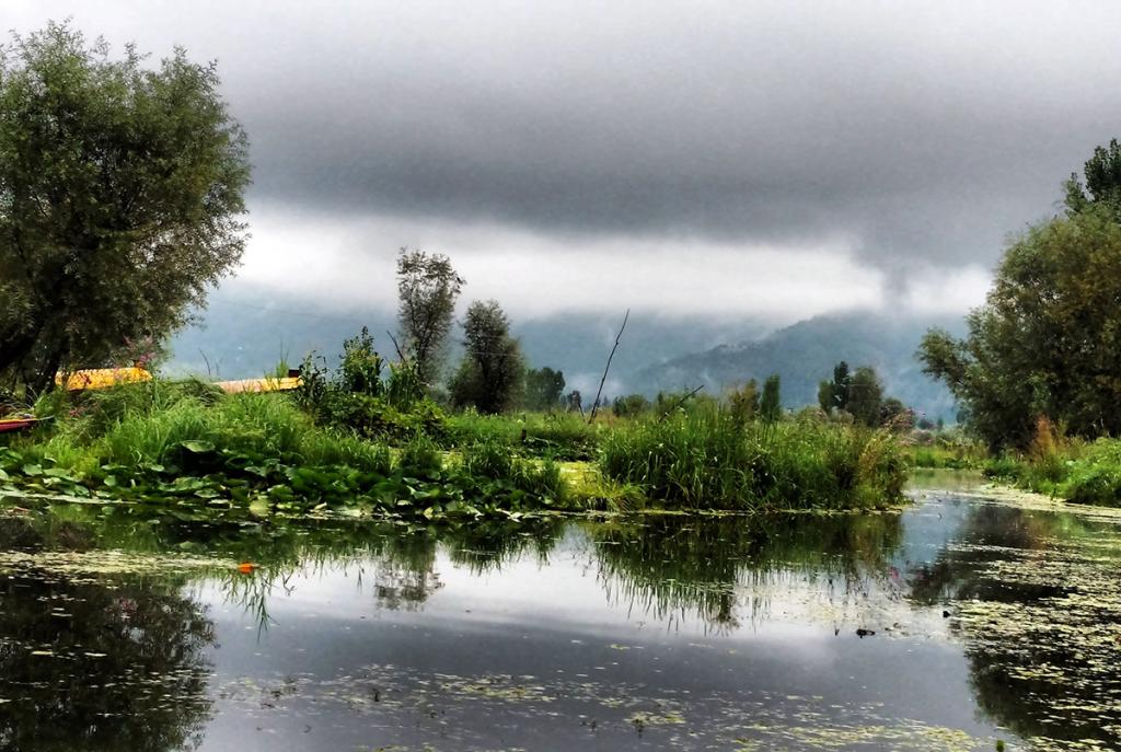 Dal-lake,-Srinagar,-Kashmir-04