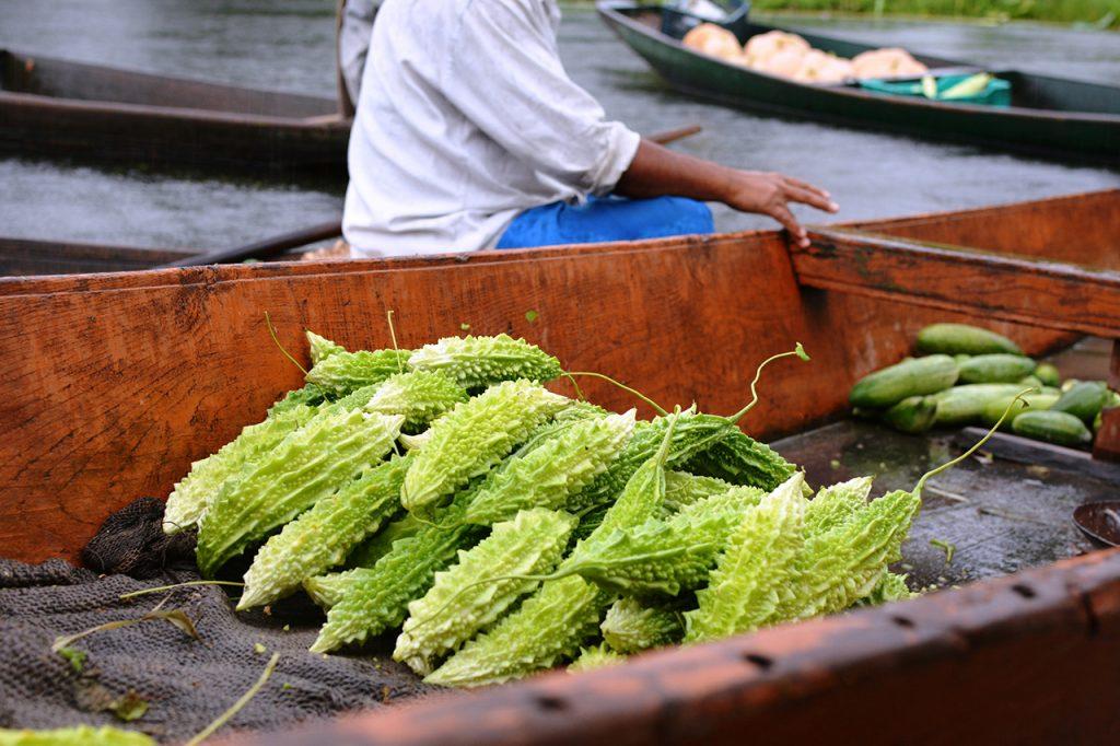 Dal-lake,-Srinagar,-Kashmir-06