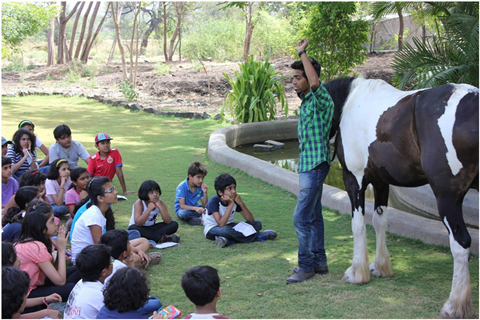 Japalouppe Equestrian Centre, Pune