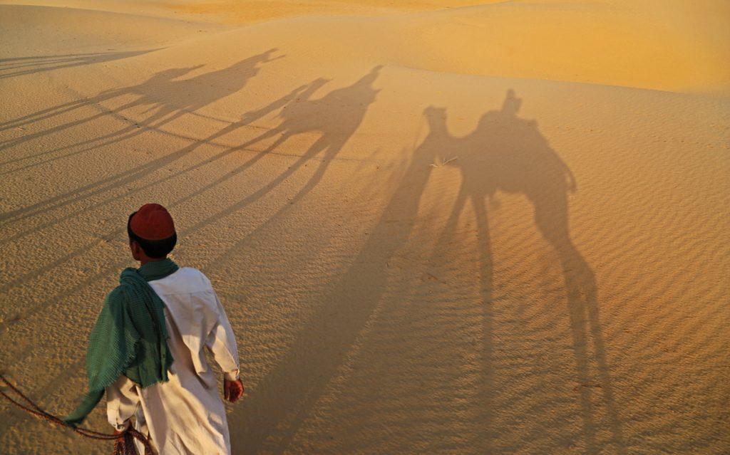 dunes of the Thar Desert