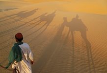 dunes of the Thar Desert