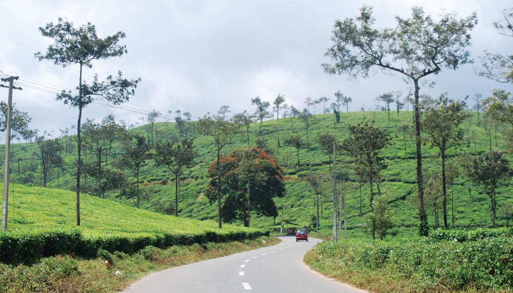 Wayanad- Western Ghats