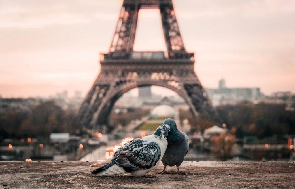 Couples Visiting Paris