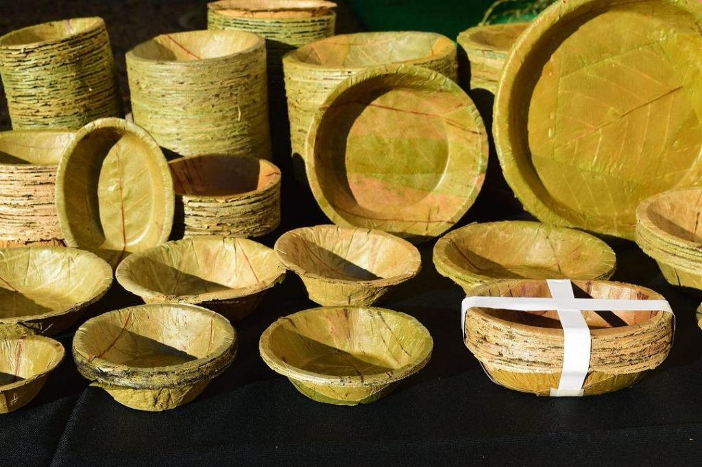 Eco-friendly Traditional Products in India - Sal Leaves