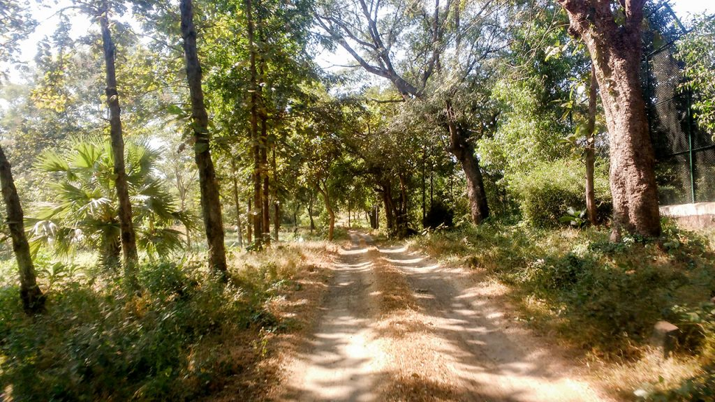 A Weekend in Silvassa