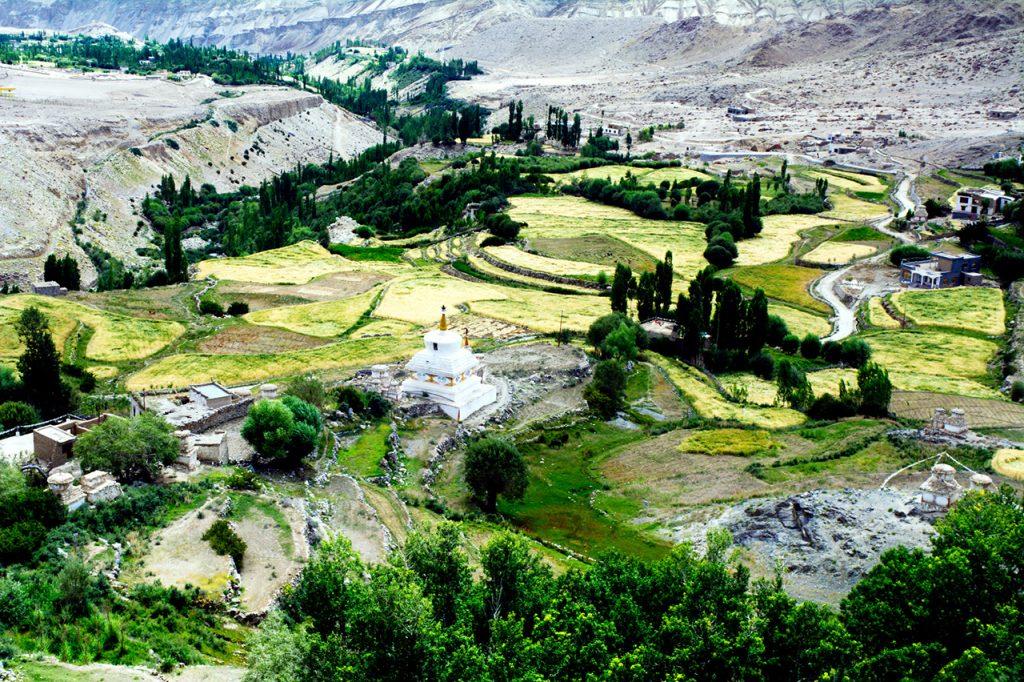 Buddhist-Monasteries-of-Leh-Likir-Monastery.jpg