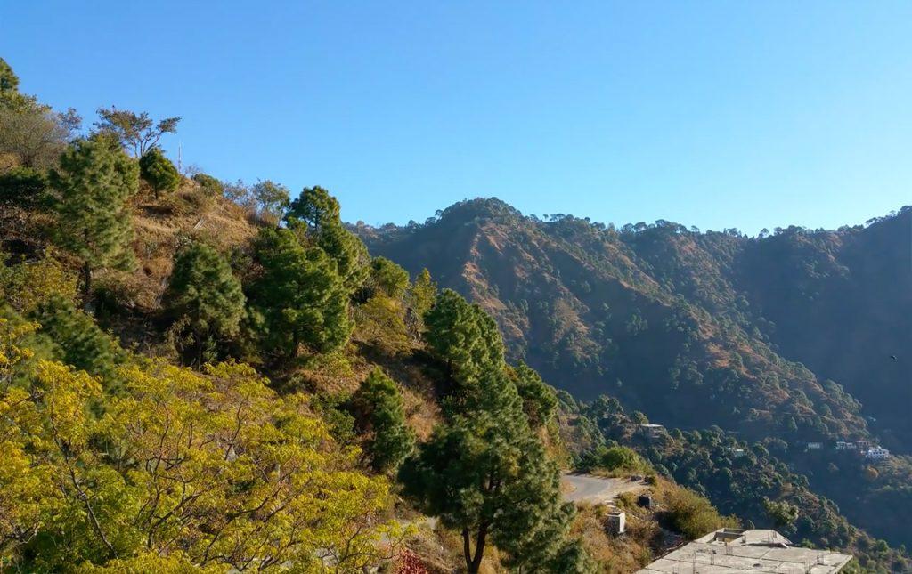 Experiencing-the-Winter-Vibes-of-Kasauli-Manki-point-Kasauli-2