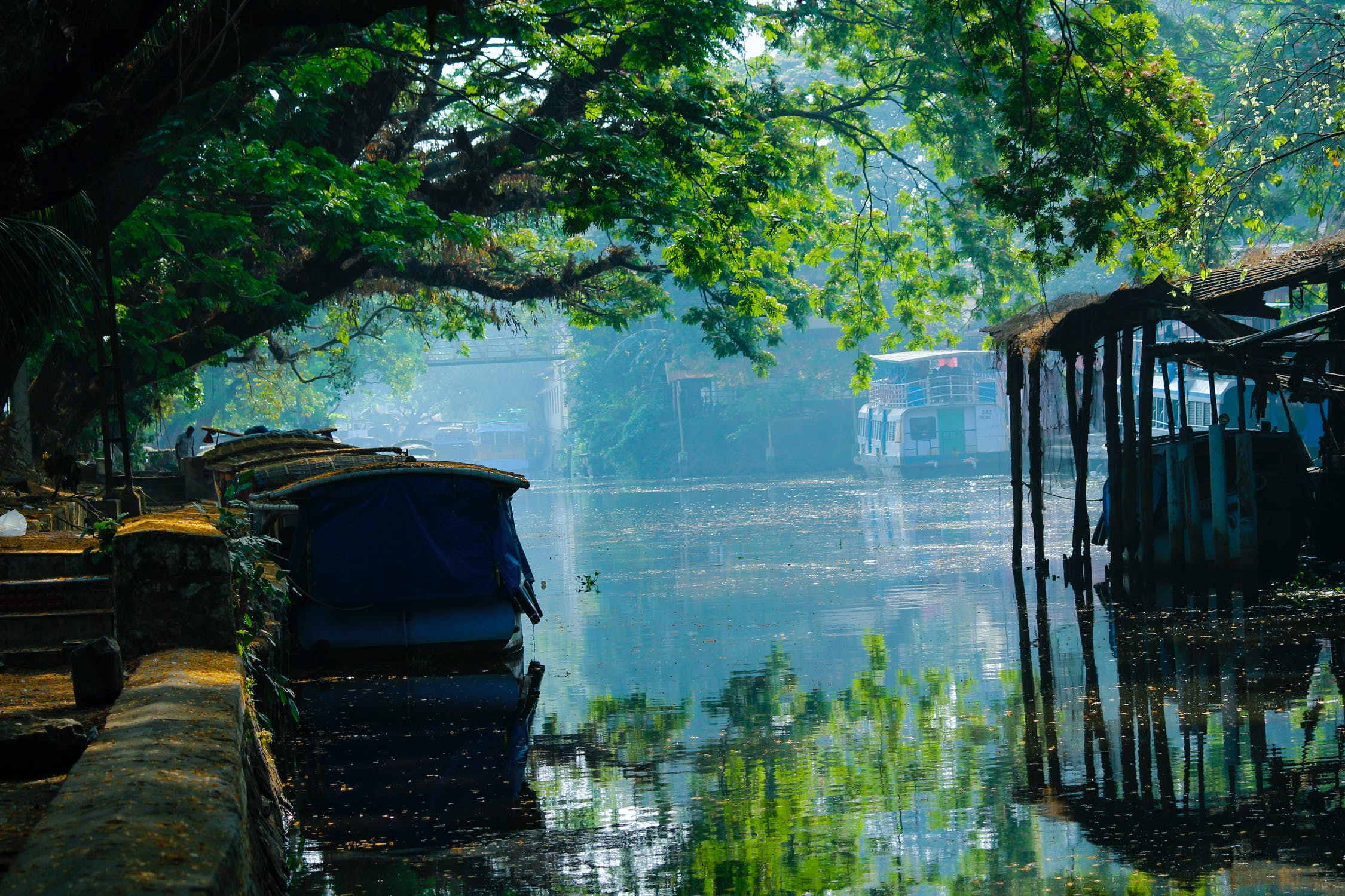 Alleppey-Dream