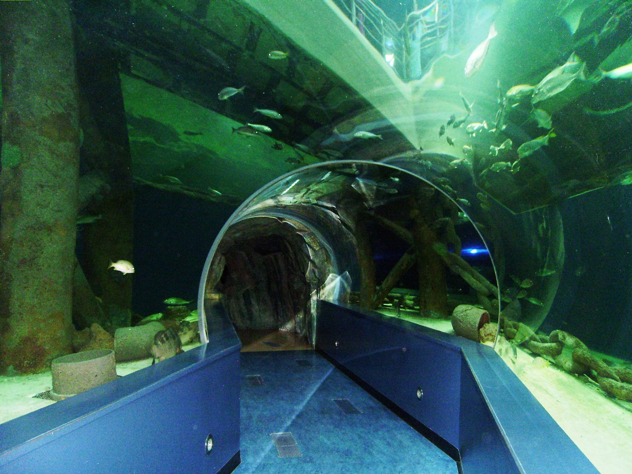 Sharjah Aquarium and Maritime Museum
