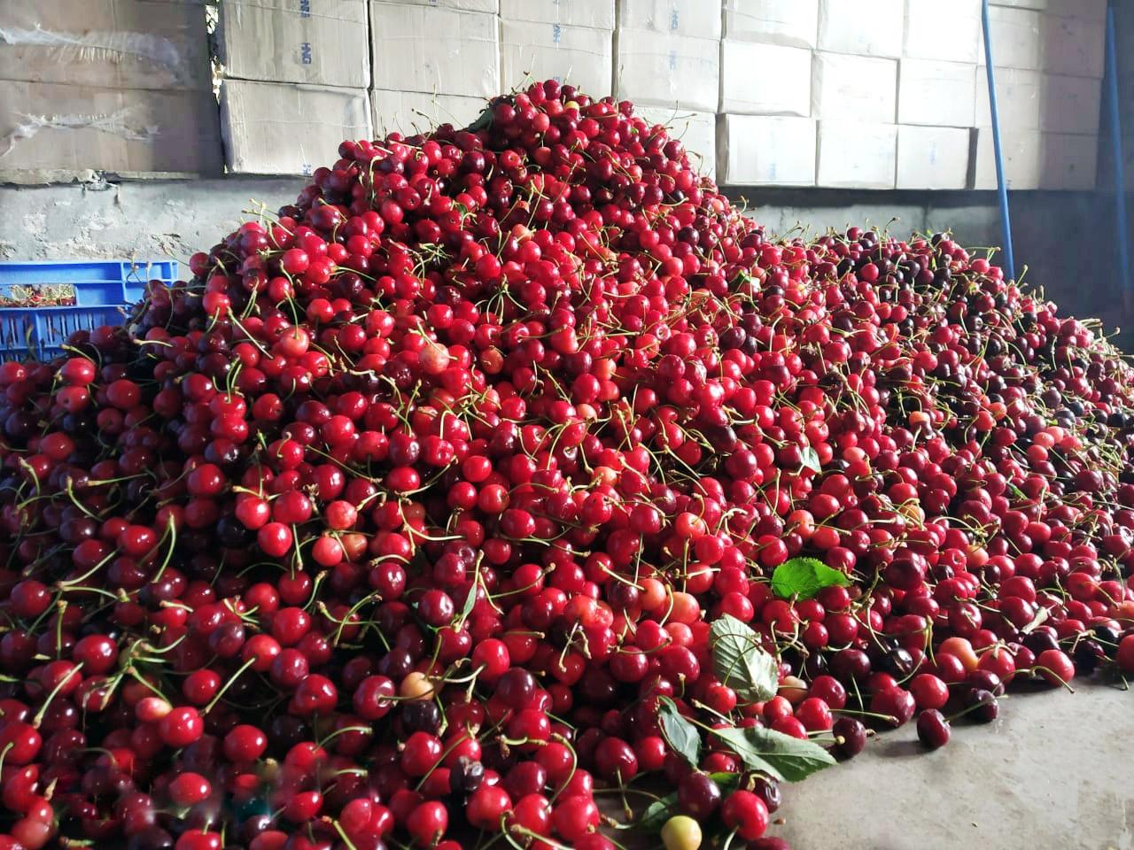 Bhuira-Jams-Fresh-fruits
