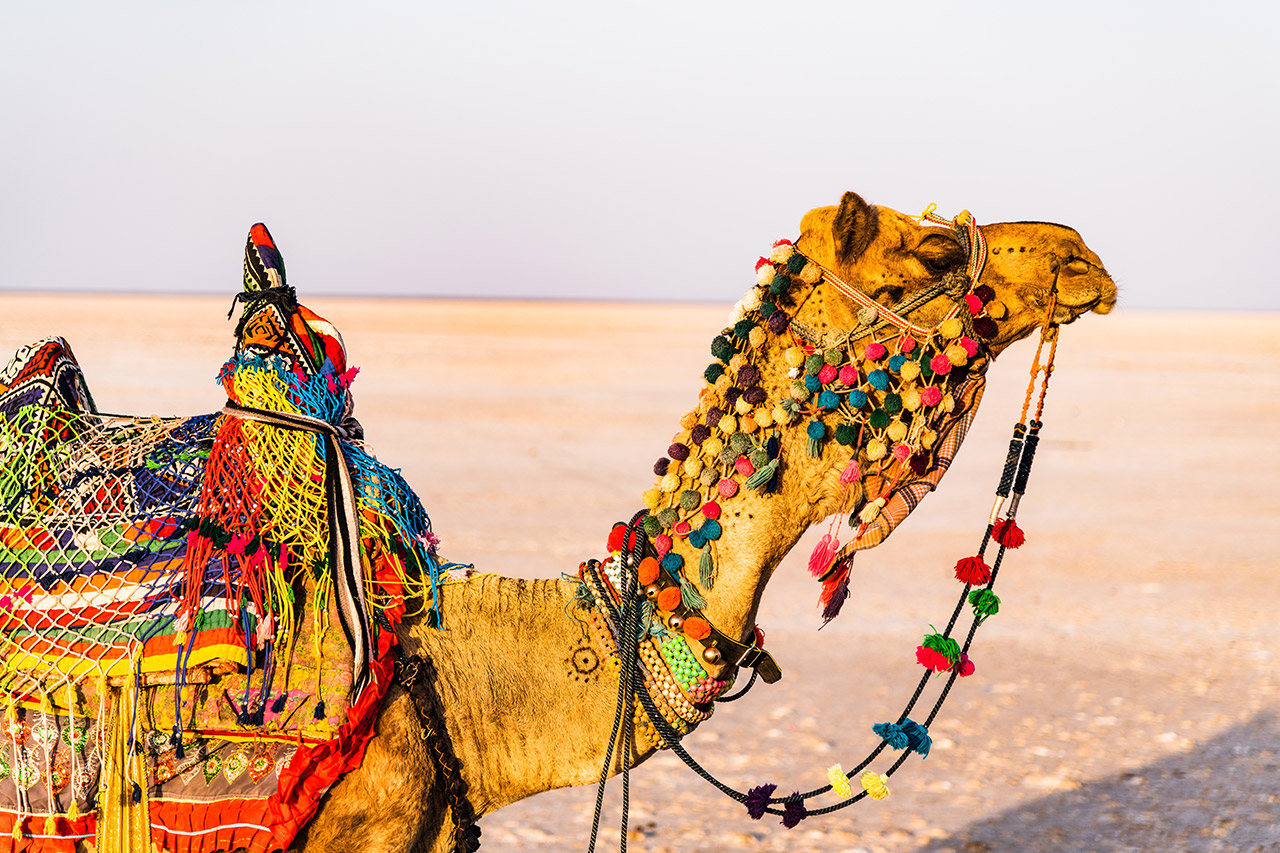 Handicrafts-from-Gujarat-are-Special