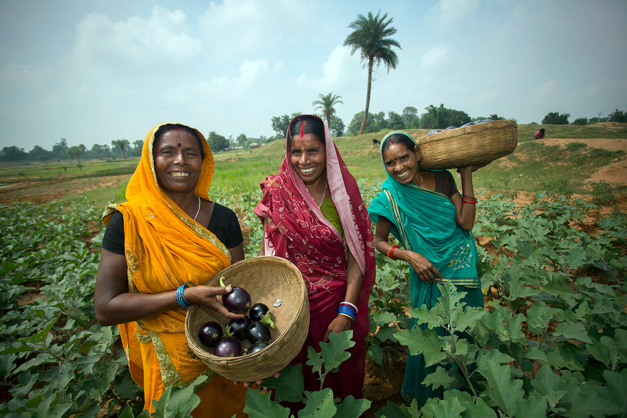 Indian-Agriculture-01