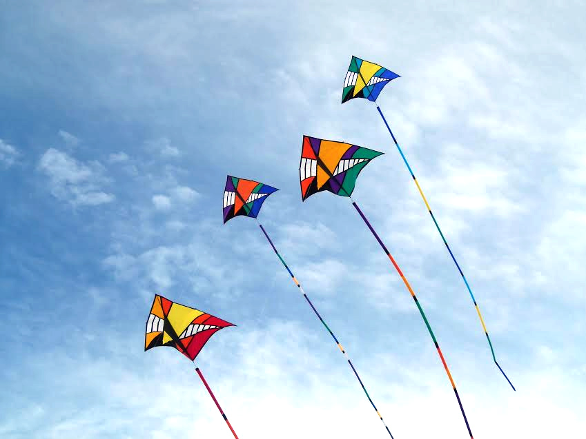 The-Colorful-Kite-Festivals-in-India