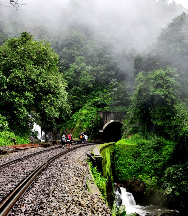 Trek on track at Dudhsagar falls in Goa