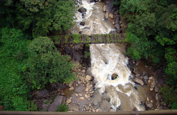 Glorious journey through Western Ghats